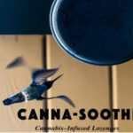 hummingbirds and feeder canna soothe lozenges strawberry sativa and tangerine indica